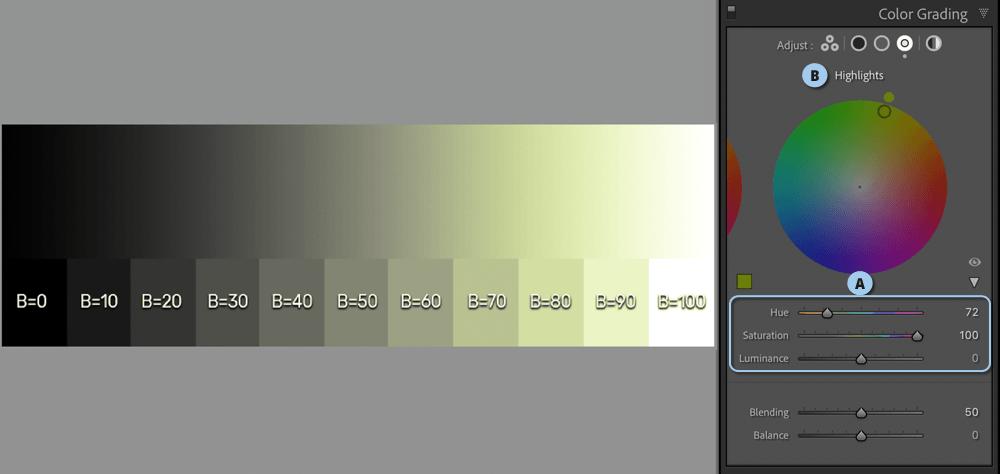 Color Grading דוגמא 4